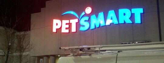PetSmart is one of @gracecheung604'un Beğendiği Mekanlar.