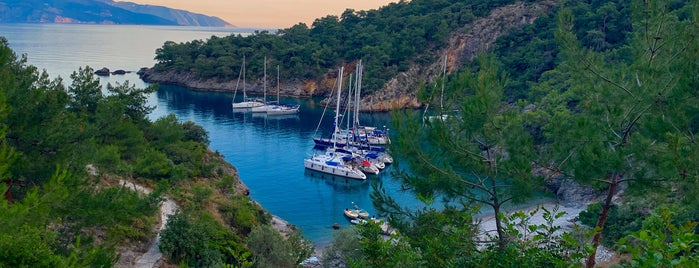 Cold Water Bay is one of muğla 14.