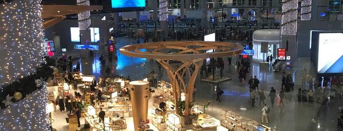 Turkish Airlines Lounge Business is one of Orte, die Ciaran gefallen.