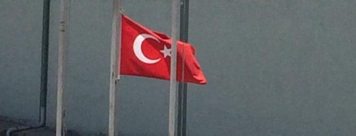 Çınarlı Sitesi is one of Lugares favoritos de Uğur.