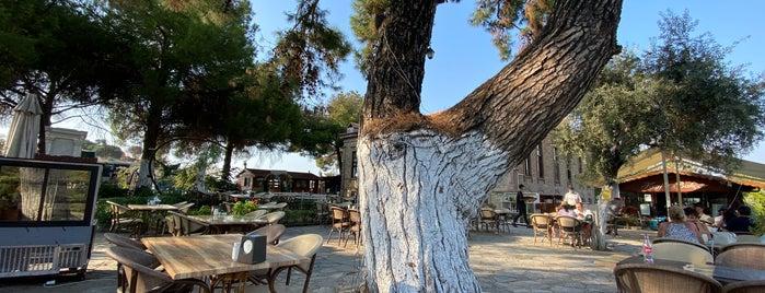 Artemis Restaurant & Şarap Evi is one of Şirince.