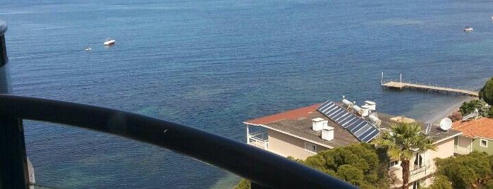 Kiwi Watersports&Diving Centre@ Grand Özçelik Hotel, Kuşadası is one of mekan.