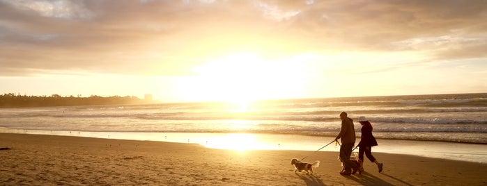 La Jolla Shores Beach is one of Trips / San Diego.