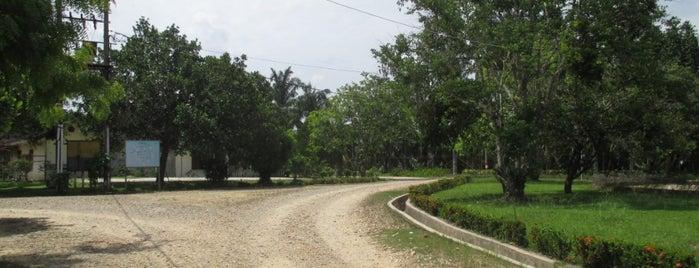 Karang Baru is one of Cities in Indonesia.
