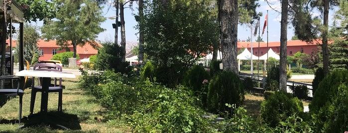 Rahvan Kafe is one of สถานที่ที่ 103372 ถูกใจ.