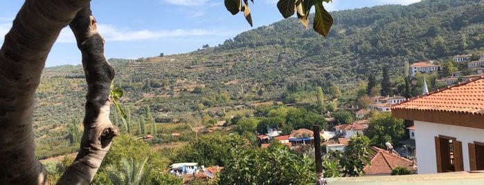 Manzara Çay Bahçesi is one of Lugares favoritos de Ibrahim.