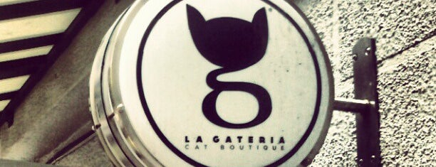 La Gatería is one of rigostrack 님이 좋아한 장소.
