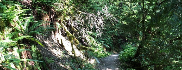 Coquihalla Canyon Provincial Park is one of Canada - Hope.