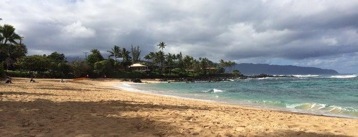 Chun's Reef is one of Oahu.