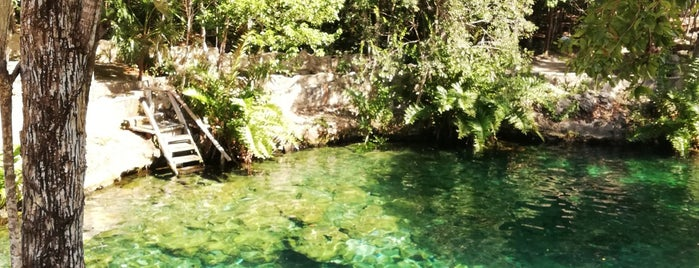 Cenote Tortuga (Aak') is one of Tulum 🌴🌞💞.