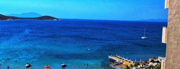 Design Plus Seya Beach Hotel is one of Veysel'in Beğendiği Mekanlar.