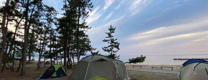 雨晴 松太枝浜キャンプ場 is one of Tempat yang Disukai モリチャン.