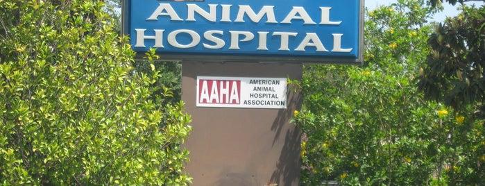 Brittmoore Animal Hospital is one of สถานที่ที่ William ถูกใจ.