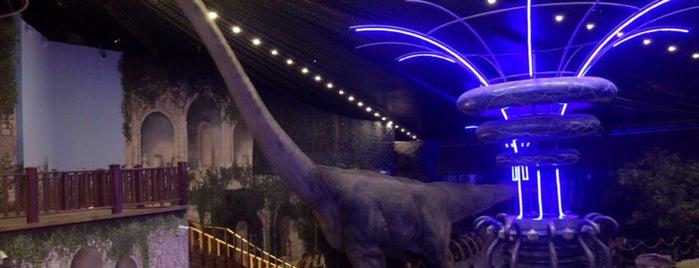 Dinozor Müzesi is one of Lieux qui ont plu à Fatih.