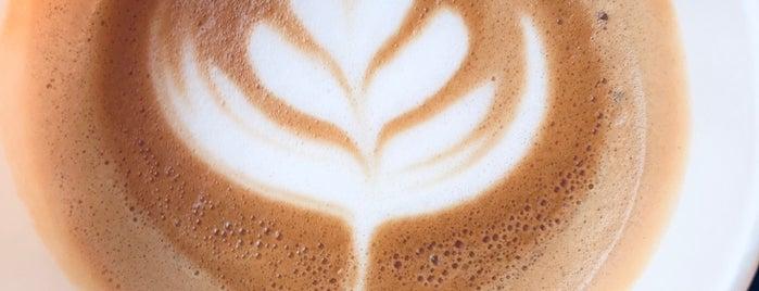Castello Coffee is one of Almadinah, SA.