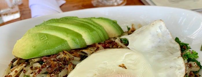 Organic Bites is one of Latanya 님이 좋아한 장소.