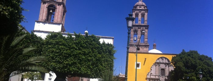 Irapuato is one of Orte, die Rosco gefallen.