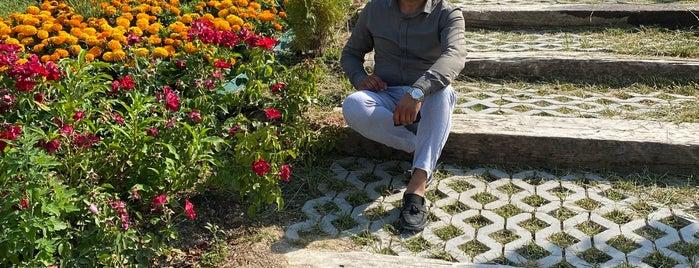 Frig Vadisi Emre Gölü Sosyal Tesisi is one of Aydın'ın Kaydettiği Mekanlar.