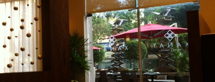 Xanat Bistro & Terrace is one of Rest Polanco.