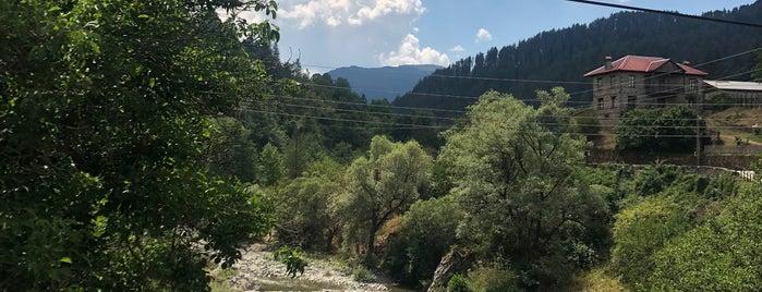 Γεφύρι Βοβούσας is one of Amazing Epirus.
