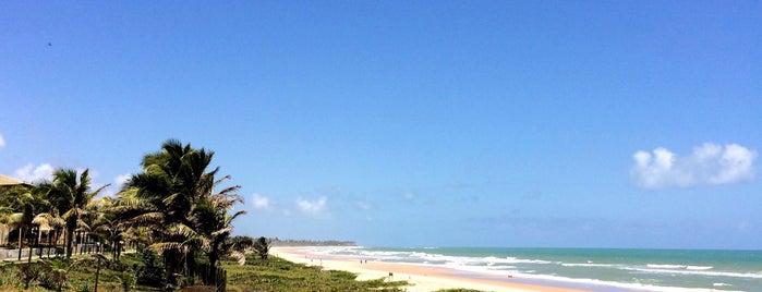 Costa do Sauípe is one of Posti che sono piaciuti a Cariina.