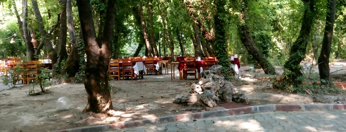 Günlüklü Restaurant is one of Dalyan.
