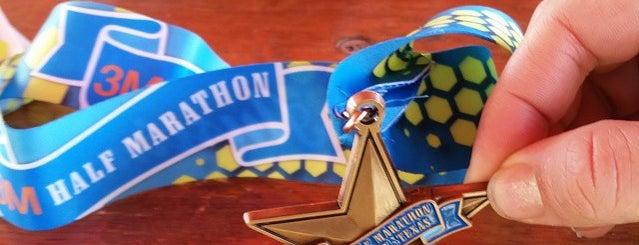 The 2013 3M Half Marathon & Relay Start and Finish