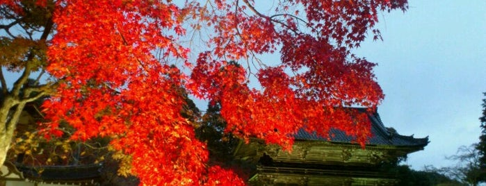 Jingo-ji Temple is one of 寺社仏閣.