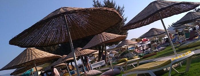Copacabana Beach Club is one of Tempat yang Disukai Alkım.