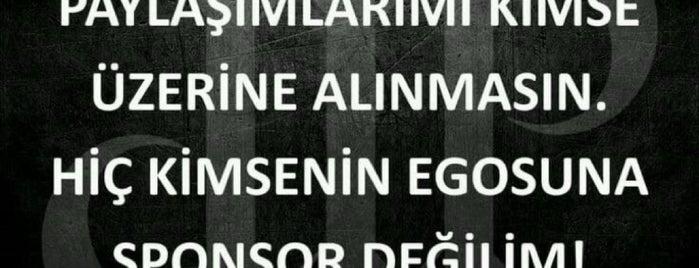 TÜRKİYE is one of yenilist.