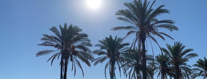 Valencia city beach is one of İspanya.
