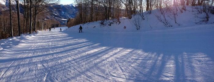 Abetone is one of Dove sciare.