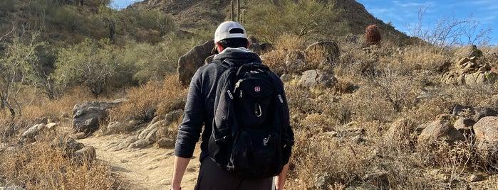 Sunrise Trail is one of Phoenix.