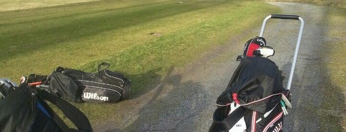 Pickala Golf Club is one of Posti che sono piaciuti a Martti.