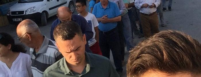 Babacan Firini Urla is one of Özgül'un Beğendiği Mekanlar.