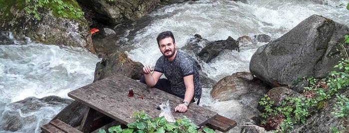 Derekızık Dağ Evleri is one of Murat karacimさんのお気に入りスポット.