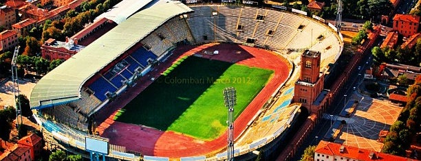 Stadio Renato Dall'Ara is one of International Sports~Part 2....