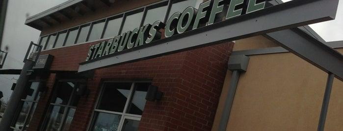 Starbucks is one of Maria 님이 좋아한 장소.