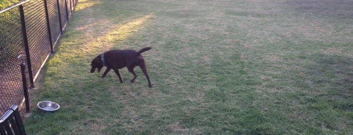 Seagate Dog Park is one of Chancelor'un Beğendiği Mekanlar.