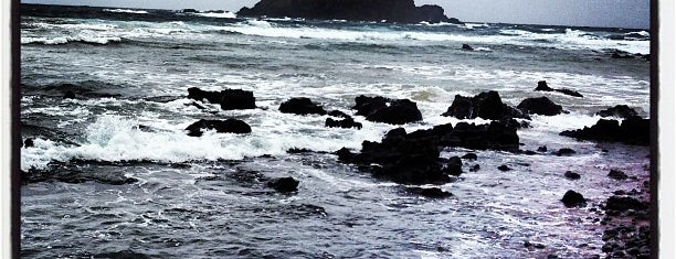 Wai'ānapanapa State Park is one of Stevenson Favorite US Beaches.