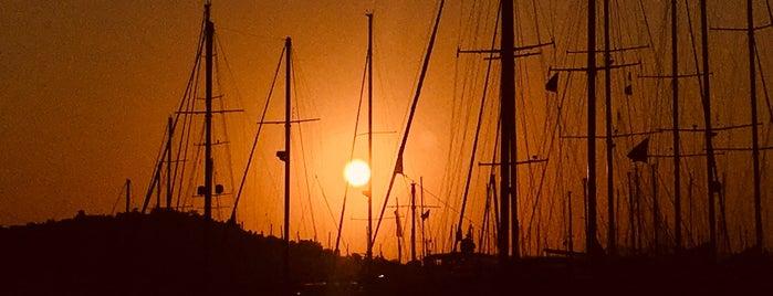 Bodrum Yacht Clup Marina is one of Orte, die Teoman gefallen.