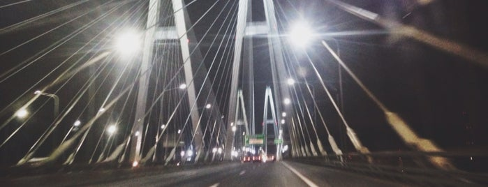 Bolshoy Obukhovsky Bridge (Cable-stayed bridge) is one of Tanyaさんのお気に入りスポット.