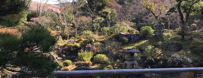 Yoshikien Garden is one of Lieux qui ont plu à Chris.