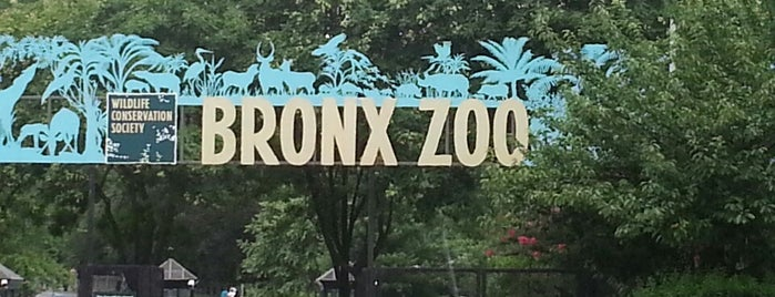 Bronx Zoo is one of New York, New York.