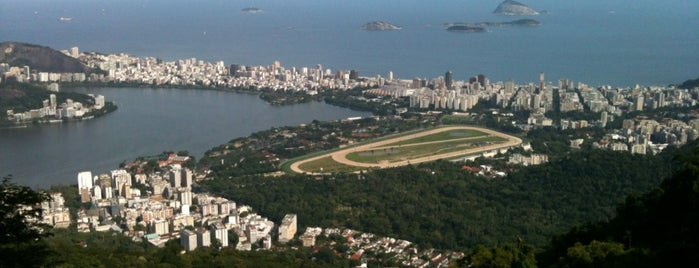 Estrada das Paineiras is one of Top 10 favorites places in Rio de Janeiro, Brasil.
