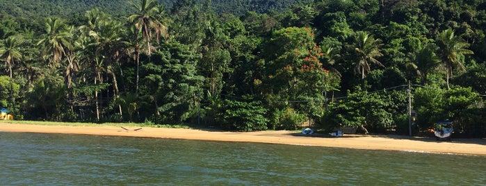 Praia da Tapera is one of Locais curtidos por Lichu.