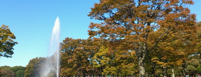 Yoyogi Park is one of Locais curtidos por 西院.