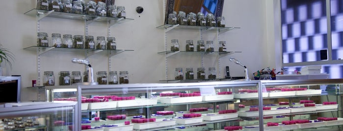 Purple Star MD Medical Cannabis Dispensary is one of Int'l Random Places.