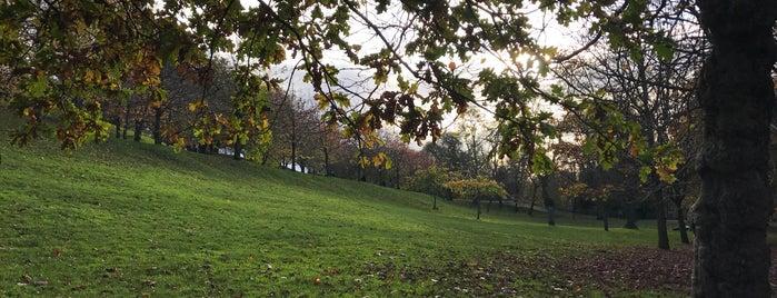 Kelvingrove Park is one of Locais curtidos por Hemera.