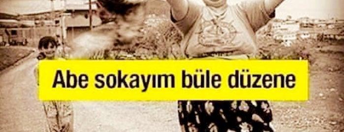 ZIKKIMIN DİBİ is one of Behire'nin Beğendiği Mekanlar.